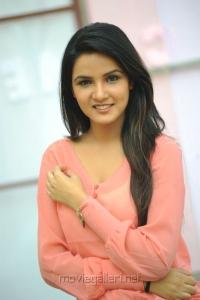 Actress Jasmin Bhasin Latest Stills at Dillunnodu Press Meet