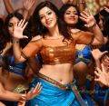Jawan Movie Heroine Mehreen Pirzada Hot Photos HD