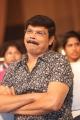 Director Boyapati Srinu @ Jaya Janaki Nayaka Movie Audio Launch Stills