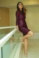 Kshana Kshanam Movie Actress Jia Sharma Pics