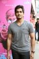 Actor Siddharth @ Jigarthanda Movie Audio Launch Stills