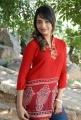 Telugu Actress Jiya Photos in Red Top & Blue Jeans