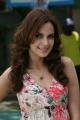 Actress Shazahn Padamsee Stills @ Kanimozhi Movie