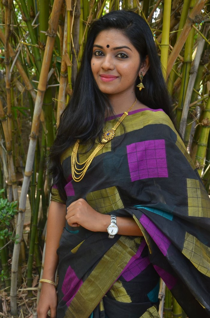 Actress Gayathri krishna @ Joker Movie Press Meet Stills