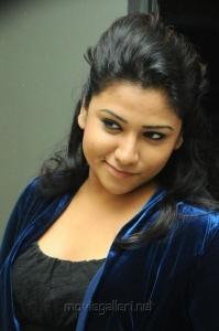 Telugu Actress Jyothi Latest Hot Photos