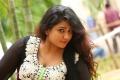 Telugu Actress Jyothi Photos @ Sahasam Seyara Dimbaka Trailer Launch
