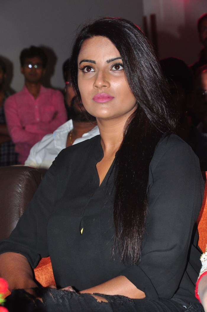 Actress Jyotii Sethi Pics @ Nannu Vadili Neevu Polevule Audio Launch