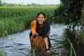 Actress Chandni in Kaali Charan Telugu Movie Stills