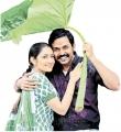 Sayesha Saigal, Karthi in Kadai Kutty Singam Movie Stills
