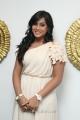 Actress Thulasi Nair at Kadal Press Meet Stills