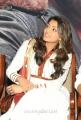 Actress Kajal Agarwal New Photo Gallery