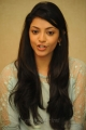 Actress Kajal Agarwal New Cute Photos at Sir Vacharu Movie Interview