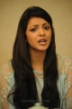 Telugu Actress Kajal Agarwal New Cute Photos at Sarocharu Interview