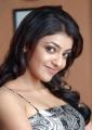 Kajal Agarwal New Cute Pics in Mr Perfect Movie