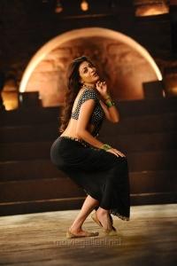 Janatha Garage Pakka Local Song Kajal Agarwal Hot Pics
