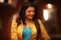 Actress Kajal Agarwal Hot Photos in Sarocharu Movie