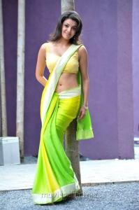 Kajal Agarwal Hot Pics in Saree