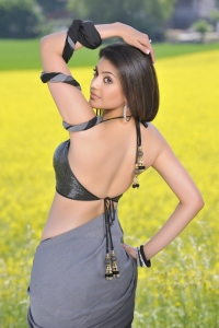 Kajal Agarwal Hot Photos Stills at Veera Telugu Movie