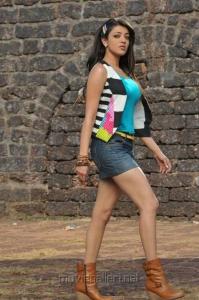 Kajal Agarwal Hot in Shorts Pics