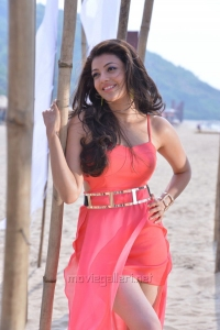 Temper Movie Actress Kajal Hot Photos