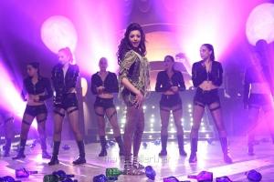Actress Kajal Agarwal Hot Photos in Temper Movie