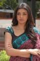 Kajal Agarwal Saree Pics Photos in Mr Perfect