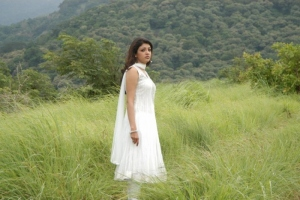 Kajal Agarwal Stills in Mr Perfect