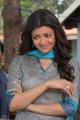Mr Perfect Actress Kajal in Churidar Stills
