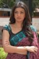 Kajal Cute Saree Pics