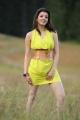 Brindavanam Actress Kajal Hot Images in Green Yellow Dress