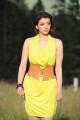 Actress Kajal Hot Images in Brindavanam