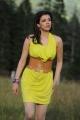 Telugu Actress Kajal Hot Images