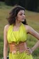Actress Kajal Latest Hot Images