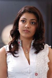 Kajal Beautiful Latest Cute Stills