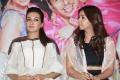 Jiiva, Catherine Tresa, Nikki Galrani @ Kalakalappu 2 Movie Press Meet Stills