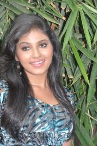 Anjali at Kalakalappu Press Meet Stills