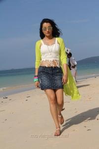Actress Trisha Krishnan Kalavathi Movie Hot Photos