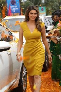 Actress Hansika Motwani Kalavathi Movie Hot Photos