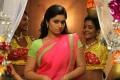 Aranmanai 2 Movie Heroine Poonam Bajwa Wallpapers
