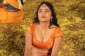 Actress Jothisha Hot Stills in Kallapetty Tamil Movie