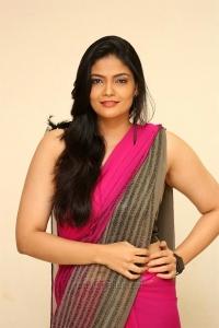 Telugu Actress Kalpika in Saree Latest Pics HD