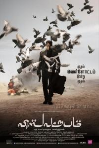 Kamal Hassan Viswaroopam Movie Posters