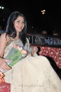 Actres Kamalini Mukerjee Latest Photos in Saree