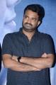 Director Vijay @ Kanam Pre Release Function Stills