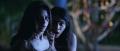 Vedhika, Nikki Tamboli in Kanchana 3 Movie New Pics HD