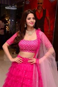 Actress Vedhika @ Kanchana 3 Movie Success Meet Photos