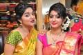 Haneesha, Vaibhavi @ Kancheevaram Collection Launch at Srinivasa Textiles