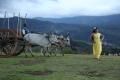 Actress Varsha Aswathy in Kangaroo Movie Photos
