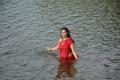 Actress Varsha Ashwathi Hot in Kangaroo Movie Stills