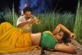 Karan, Thirupta Hot in Kanniyum Kaalaiyum Sema Kadhal Movie Stills